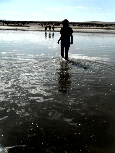 Layne Salt Lake (renfehr.wordpress.com)