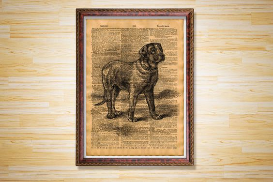 Antique print Animal poster Dog dictionary by CrowDictionaryPrints