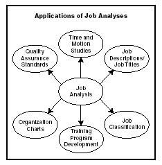what is job design explain the Division of human resources csu will be recognised for the outstanding  achievements of its people work design and job analysis: an overview for  managers.