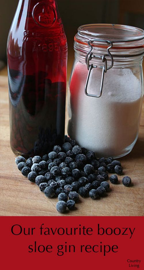 This sloe gin recipe takes just ten minutes to prepare and anything up to three months to infuse. Sloes, the hard, blue-black fruit of the blackthorn, appear from the end of September/early October depending on the weather and where you live in the UK. If you can't wait until the first frost to pick them, store overnight in the freezer before starting the recipe.