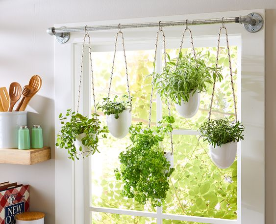 This simple herb hanging idea uses a steel pipe, rope, and glazed planters to make a stunning indoor garden display.