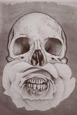 http://stephaniedall.tumblr.com/ #skull