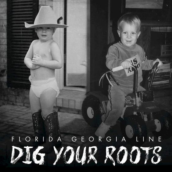 Florida Georgia Line - Dig Your Roots - 2016 - iTunes Plus AAC M4A - Album