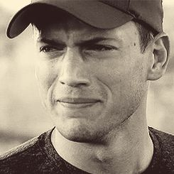 WiffleGif has the awesome gifs on the internets. wentworth miller michael scofield gifs, reaction gifs, cat gifs, and so much more.