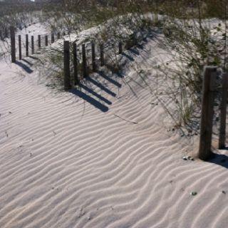 Beach in December! Wilmington, NC visiting friends