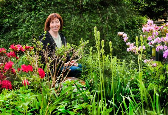 GARDENING: How to turn your yard into a meadow like nature intended; Updated - Life - Shoreline Times