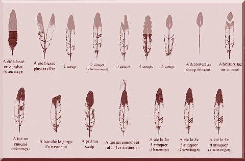 """Les Indiens pratiquent le langage des plumes pour célébrer leur fait d'armes. Il permet d'afficher sa valeur de combattant ou sert pour les chamans.    Le brave porte alors une plume d'aigle illustrant son haut fait. Cette plume peut être fixé dans sa chevelure, mais aussi être fixée sur une lance, un bouclier, un sac, un arc, un calumet etc..    Il existe plusieurs façons de coder ses exploits. Exemple, un Indien qui a porté cinq """"coup"""" sur ses adversaires peut arb..."""