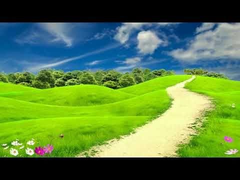 Spring Landscape Royalty Free Motion Background Loops Hd Wedding Backgr Spring Landscape Landscape Wallpaper Landscape