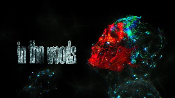 In The Woods Festival 2016 on Vimeo