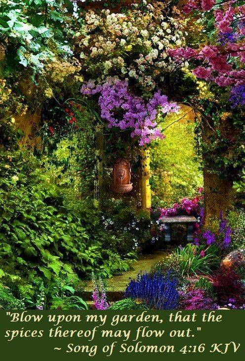 The Garden And Fall Afresh By Kari Jobe Https Www Youtube Com Watch V N5grgjhcue4 Https Www Youtube Com Beautiful Gardens Dream Garden Gorgeous Gardens