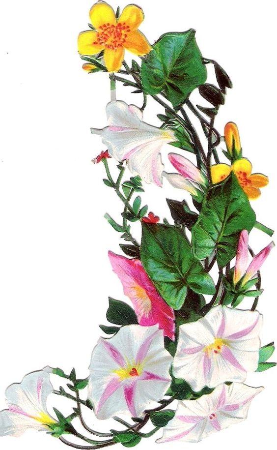 Oblaten Glanzbild scrap die cut chromo Blume  13,3cm flower fleur: