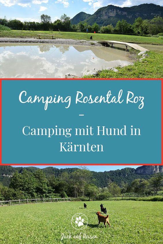 Camping Rosental Roz Camping Mit Hund In Karnten Camping Urlaub Mit Hund Und Reisen