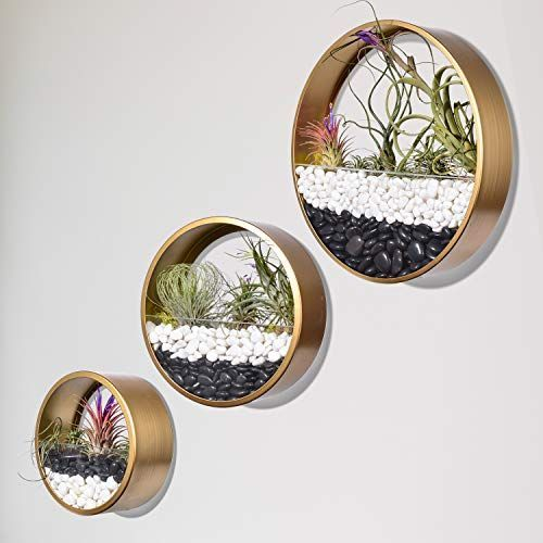 Round Hanging Wall Vase Succulent Planter Vase Metal Flower Pots Indoor Decorative Air Plants Containe In 2020 Metal Flower Pots Hanging Wall Vase Metal Wall Planters