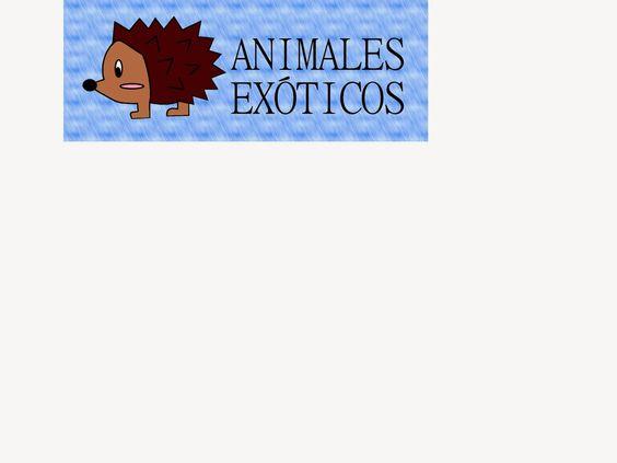 Logotipo para una empresa
