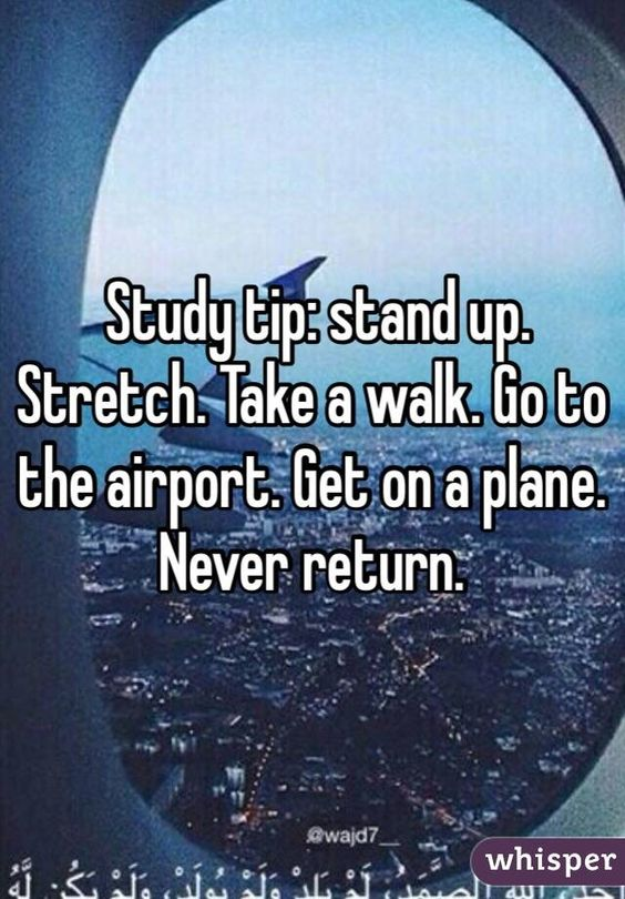 Study tip: stand up. Stretch. Take a walk. Go to the airport. Get on a plane. Never return.