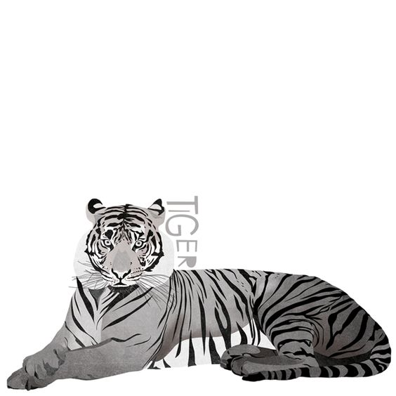 T is for Tiger #animalart
