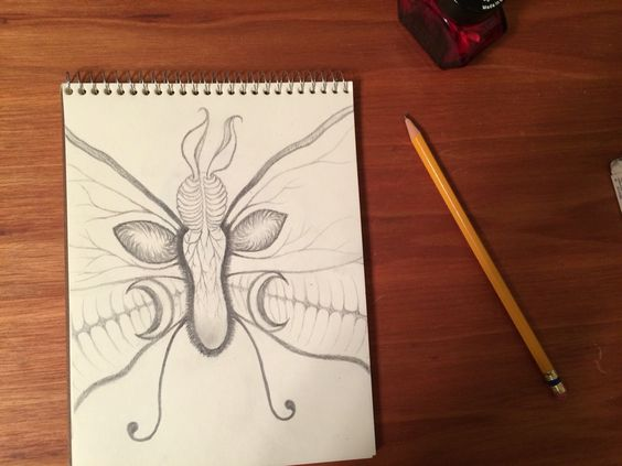 Drawing of a butterfly