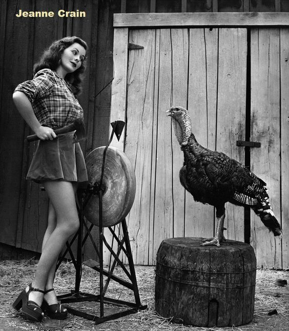 Jeanne Crain getting ready for Thanksgiving actress