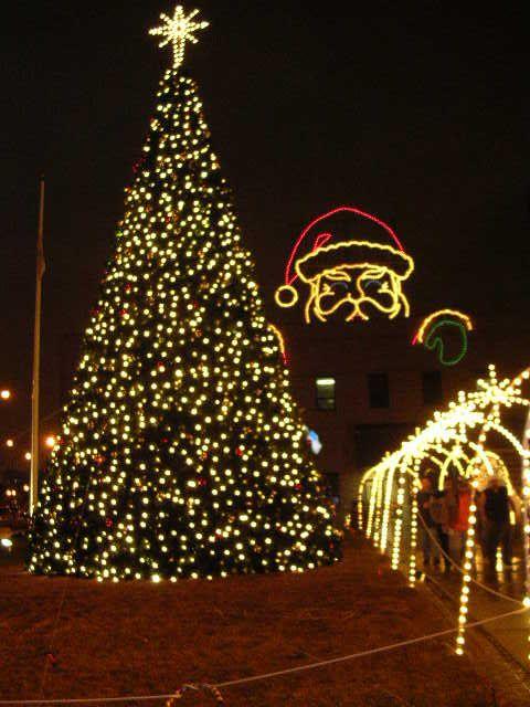 A Christmas Tree The Symbol Of The Season Christmas Tree Holiday Christmas