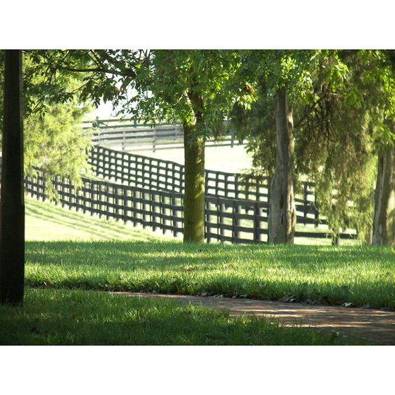 Lexington-Fayette, KY : Three Chimneys horse farm photo, picture,... ❤ liked on Polyvore