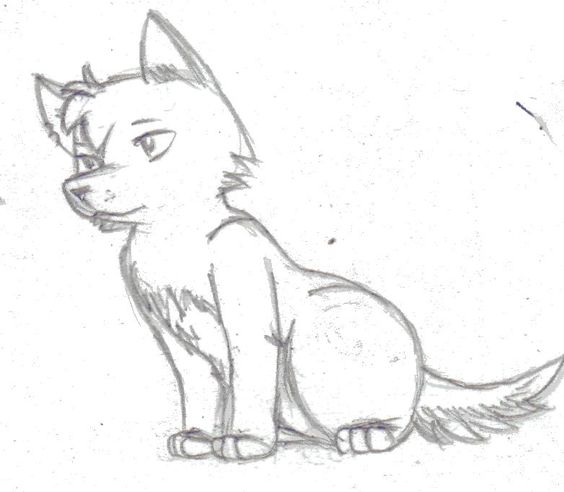easy+sketch+wolf | how...