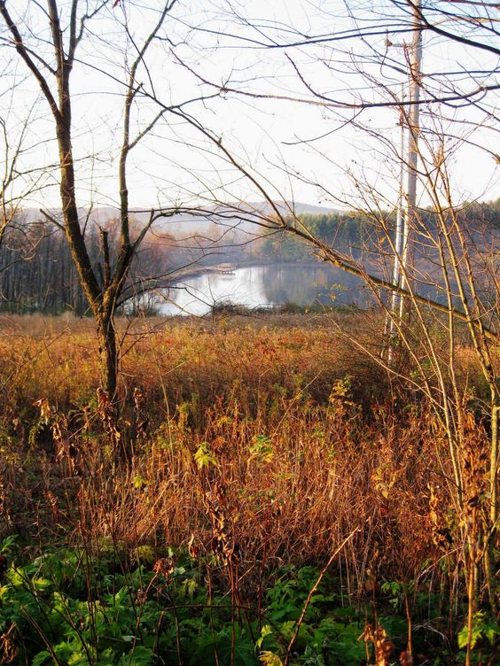 Wilderness Center Lake - Fall 2012