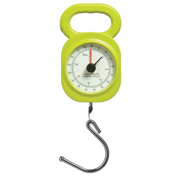 Premier Housewares Lime Green Luggage Scale – 1900975 – Brighten up your home with the lime green collection of homewares and cookware. Products include kitchenware, tabletop and bathroom accessories, soft furnishings, decorative accessories, lighting and occasional furniture. Items can be purchased from a host of online stores and independent local retailers or for trade enquiries please visit http://www.premierhousewares.co.uk for more information.