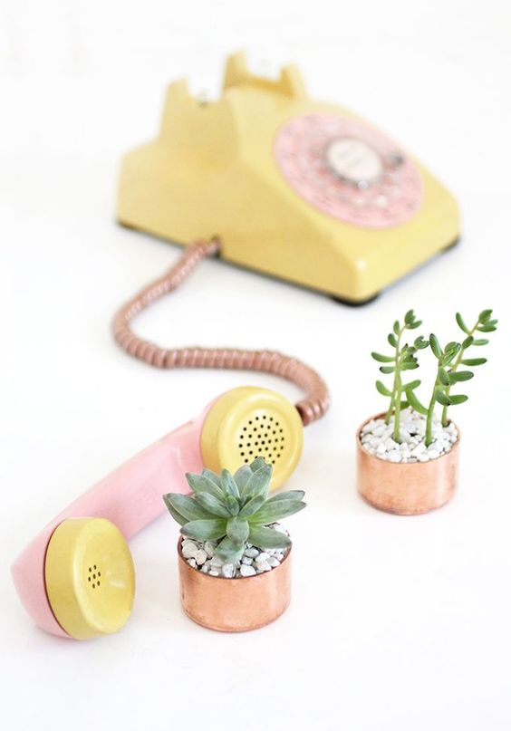 Copper Cap Succulents // I Spy DIYCopper is a massive trend item at the moment, and succulent are always super cute. So why not together? All you need is a good copper spray paint and anything you find can become copper and perfect. Plus adding a plant to something will always make it better.