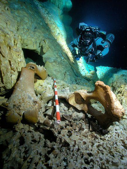 Titanic Pictures Underwater Human Remains   titanic