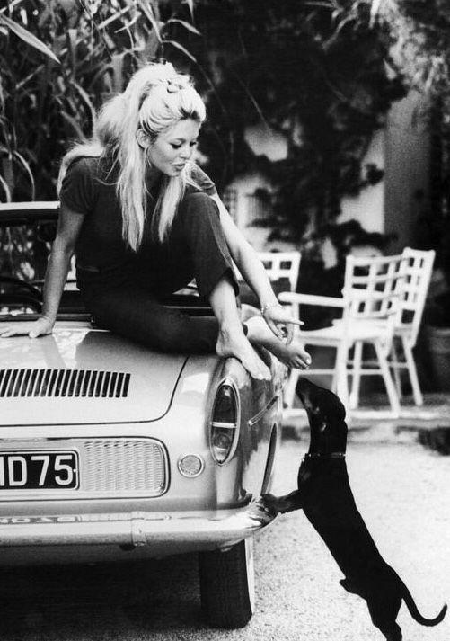 Brigitte Bardot with her Dachshund  ~1960's