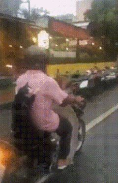 Когтистый пассажир / АйДаПрикол :)