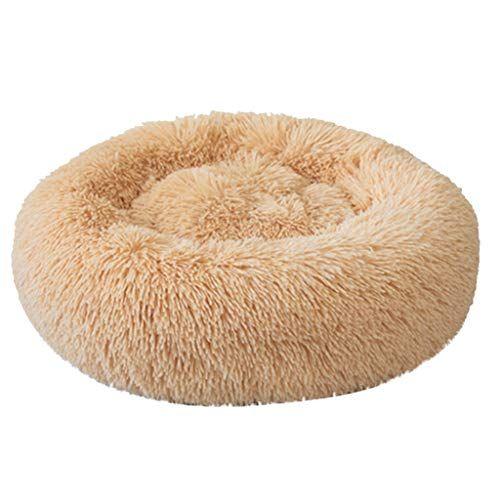 mvpkk chien lit chat lit chaud tapis de