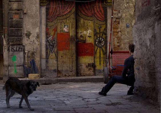 Spain........: 2007 Donata, 2007 Dw, Google Image, Favorite Places Spaces, Buenos Dias, Dog Ziggity