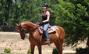 Groupon - One or Three Riding Lessons or a Full-Day Riding Camp at Lacey's Arabian Ranch (Up to 56% Off) in Garden Valley (North El Dorado). Groupon deal price: $25.00