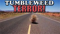 Video: Girl Freaks Out Over Tumbleweeds - A Funny Video on KillSomeTime