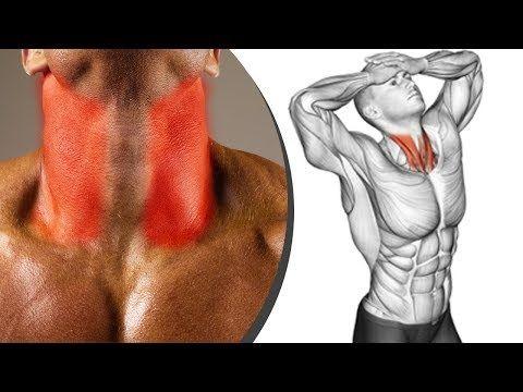 أفضل تمارين العنق الرقبة كمال الاجسام Neck Workout Youtube 12 Week Workout Weekly Workout Portrait Tattoo