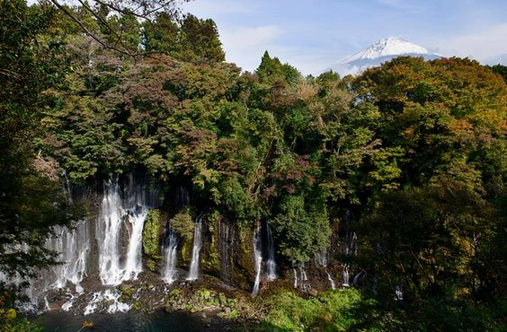 Mt. Fuji and Waterfalls _白糸の滝