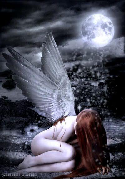 Engel Bilder - Jappy GB Pics - Angel - im-mondlicht.jpg