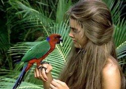 I want that trapped on a deserted tropical island, naive through puberty, coconut eating, living in a beach shack, parrot talking, blue lagoon kind of hair day.