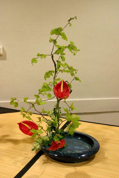 ikebana  | Soirée l'Art de l'Ikebana                                                                                                                                                     Plus