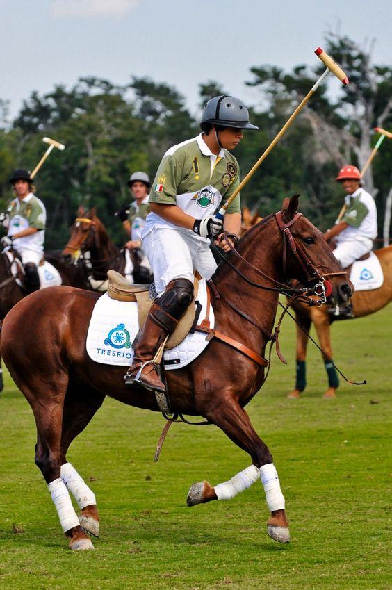http://www.haciendatresrios.com/area-attractions/cancun-equestrian-polo-center/