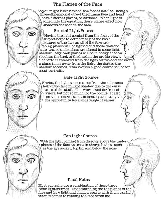 17 Best ideas about Face Proportions on Pinterest | Draw faces ...