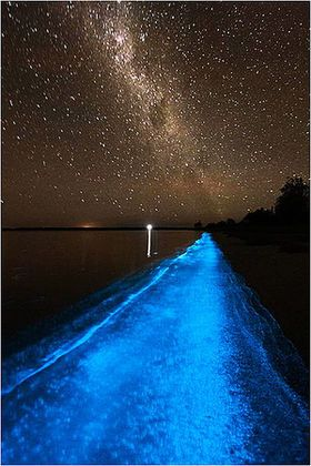 見とれてしまうほど美しい!星空のように美しく光るモルディブの砂浜が絶景! - NAVER まとめ