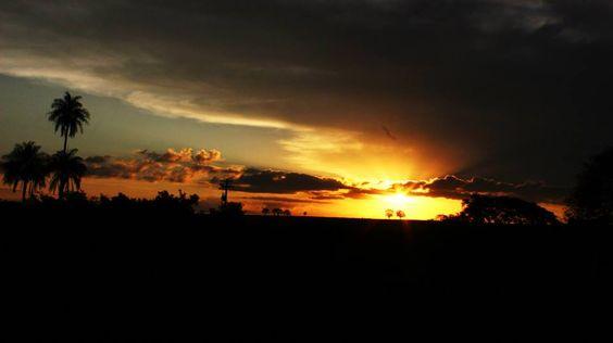 entre uma estrela e um vagalume o sol se põe. Alice Ruiz