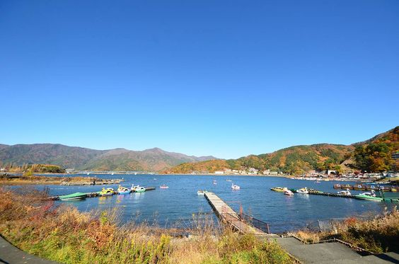 紅葉に染まる河口湖 Autumn leaves in Lake Kawaguchiko / Yamanashi,Japan