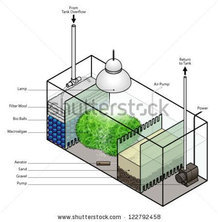 A refugium filter setup for an aquarium. - stock vector ...