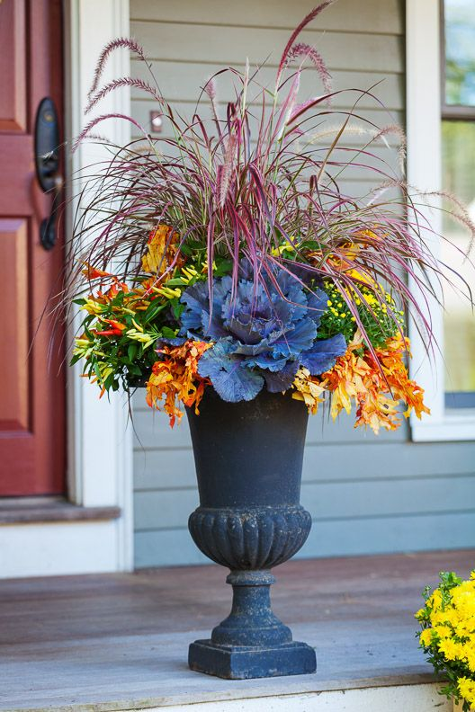 Fall containers fall and colors on pinterest for Garden arrangement of plants