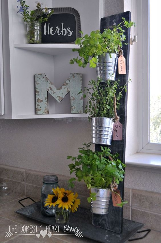 Gardens Shelf Ideas And Herbs Garden On Pinterest
