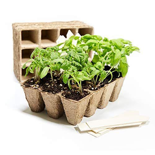 U Me Organic Peat Pots Seed Starter Tray 120 Seed Plant Https