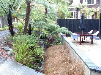 wellington native streamside garden new zealand native gardens pinterest gardens native gardens and garden ideas - Native Garden Ideas Nz